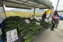 卖新鲜的有机中国黄瓜,台湾台中的路旁摊位  免版税库存照片