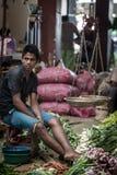 卖新鲜蔬菜和果子的供营商 库存图片