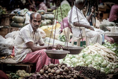 卖新鲜蔬菜和果子的供营商 免版税库存照片