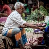 卖新鲜蔬菜和果子的供营商 库存照片