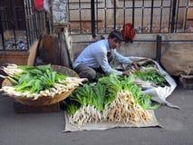 卖新鲜蔬菜在Bandra 免版税库存照片