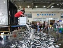 卖灰鲻鱼鱼在台湾 库存照片