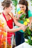 卖玫瑰色花束的卖花人妇女对她的顾客 库存图片
