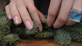 卖花人在工作:妇女递做圣诞节装饰诗歌选冷杉Nobilis 新年好晚餐宴餐 股票录像