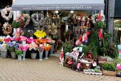 卖花人在11月 免版税库存图片