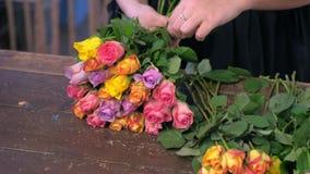 卖花人妇女由小五颜六色的玫瑰做花束在商店,手特写镜头 股票视频