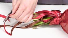 卖花人调整从一条丝带的弓在花花束  空白 关闭 股票视频