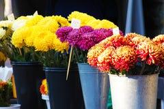 卖花的街市 免版税库存照片