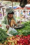 卖蔬菜水果商的妇女在亚洲市场上 bagan缅甸 免版税库存照片