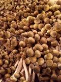 卖蘑菇 免版税库存照片