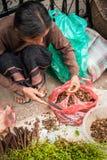 卖香料的未认出的妇女在传统亚洲市场上 老挝 免版税图库摄影