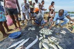 卖鱼的渔夫在卡塔赫钠,哥伦比亚 免版税图库摄影