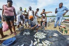 卖鱼的渔夫在卡塔赫钠,哥伦比亚 免版税库存照片