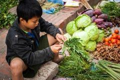 卖绿色杂货和香料亚洲食物市场的男孩 老挝 库存图片