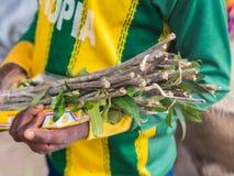 卖mefakia,一把自然木牙刷的男孩用于Ethio 免版税库存照片