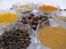 南亚和中东的香料! 库存图片