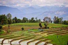 南亚米领域大阳台。 免版税库存图片