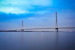 南京缆绳在晚上停留了桥梁 图库摄影