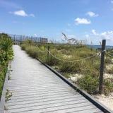 南佛罗里达海滩 库存图片