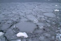 南冰洋秋天用冰包括的阴云密布天 免版税库存图片