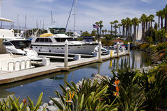 南加州太平洋游艇小游艇船坞 免版税库存照片