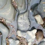 南加州浪潮水池 图库摄影