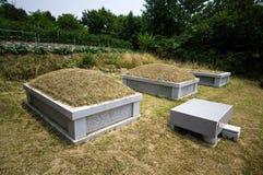 南坟墓的韩文 免版税库存照片