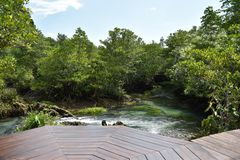 南塔河Pom Klong歌曲Nam,美洲红树国家储备 库存照片
