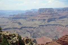 南外缘在大峡谷国家公园 arizonian 库存图片