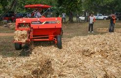 南奔,泰国:1月19日:玉米棒子的示范 库存图片