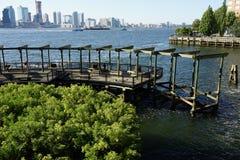 南小海湾公园10 免版税库存照片