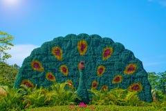 南山佛教门的中心,看法和美丽与以孔雀的形式一张床 公园是五个星 库存照片