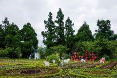 南投县,台湾Cingjing农厂小的瑞士庭院 库存照片