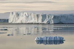 南极夜间凝思 库存图片