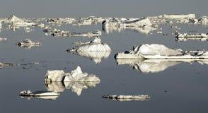 南极幻想 库存照片