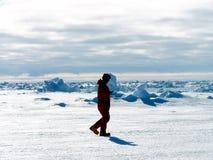 南极洲人走 库存图片