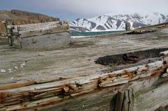 南极洲小船欺骗海岛捕鲸 图库摄影