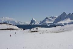 南极洲cuverville海岛 免版税库存图片