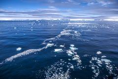 南极洲海冰风景 免版税图库摄影