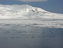 南极洲 库存照片