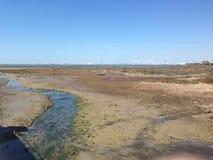 南欧的美丽的沼泽地 库存照片