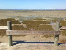南欧的美丽的沼泽 库存照片
