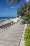 南海岸木板走道巴巴多斯 库存图片