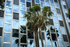 南海滩的摩天大楼 免版税库存照片