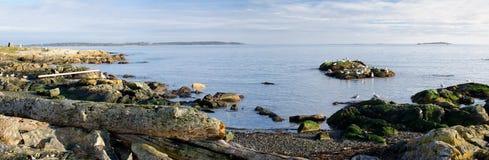 南温哥华岛, BC加拿大全景  库存图片