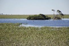 南澳大利亚盐水湖圣所  免版税图库摄影