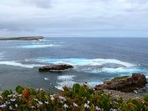南澳洲的海边。 库存图片