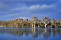 南澳洲的墨累河 免版税库存照片