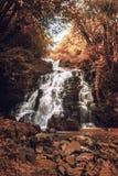 南瀑布 库存图片