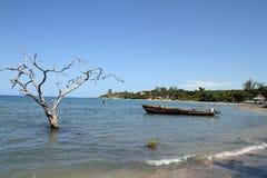 南牙买加旅行 图库摄影
